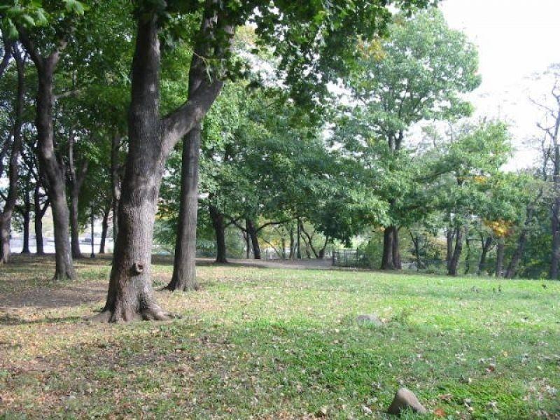 places_bronx_parks_crotona_park5