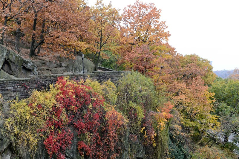 Fort Tryon Park (New York, New York)