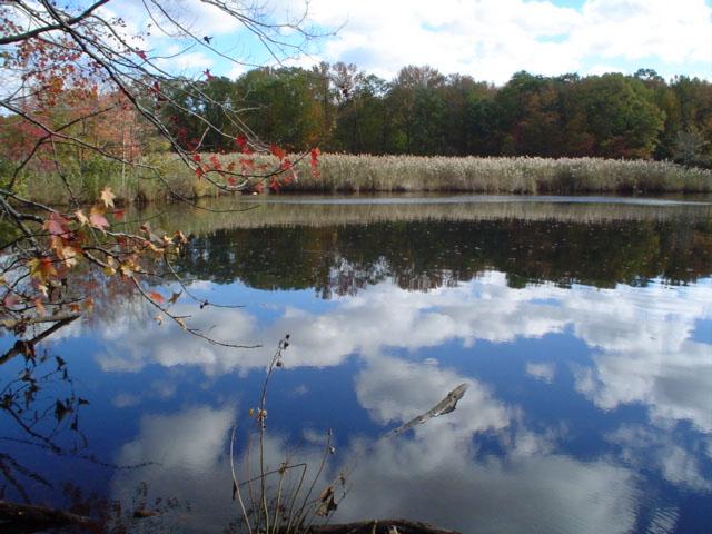 Wolfe's Pond Park (Staten Island)