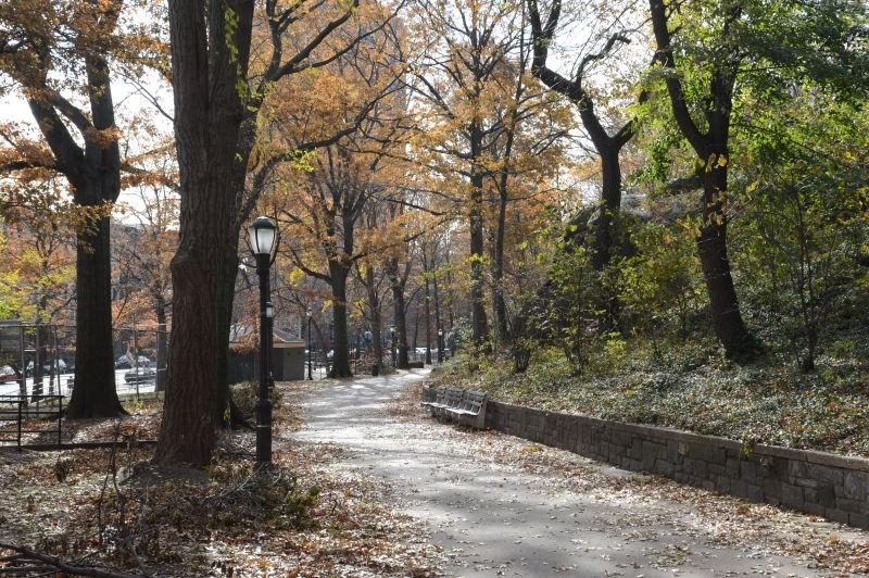 St. Nicholas Park (New York, New York)