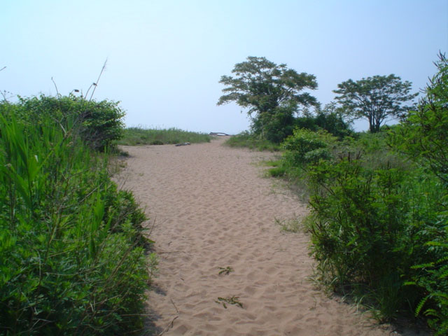 Great Kills Park ( Staten Island)