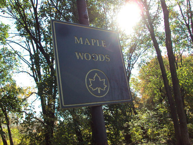 Maple Woods (Staten Island)
