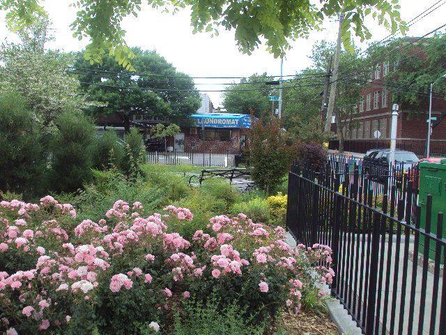Carlos R. Lillo Park (Queens, NY)