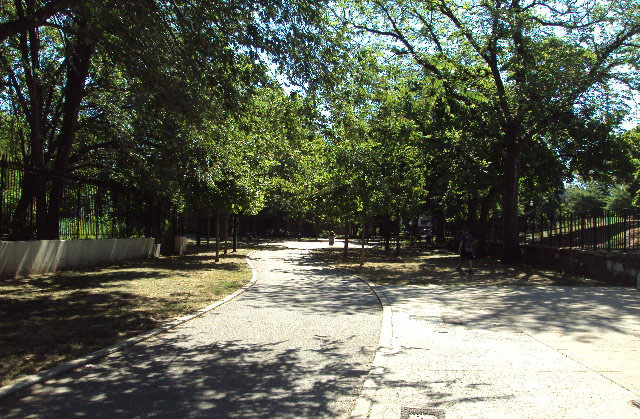 Brower Park (Brooklyn, NY)