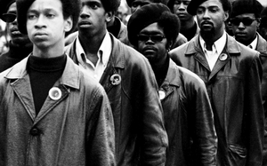 The Black Panthers: A Revolution In Review (Video / Documentary)
