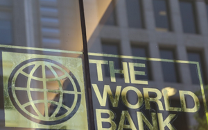 What Does The World Bank Actually Do? (Video)