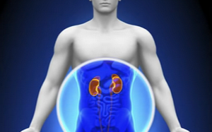 Will This Solve Organ Transplant Rejection Forever? (Video)