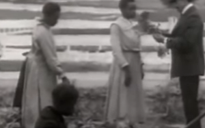 The Rise And Fall Of Jim Crow (Documentary / Video)