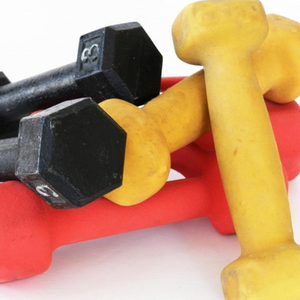 Beginner Weight Training Easy Exercises Video Urbanareas Net