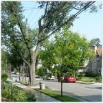 neighborhoods_queens_little_neck_300x300