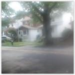 neighborhoods_staten_island_arlington_300x300
