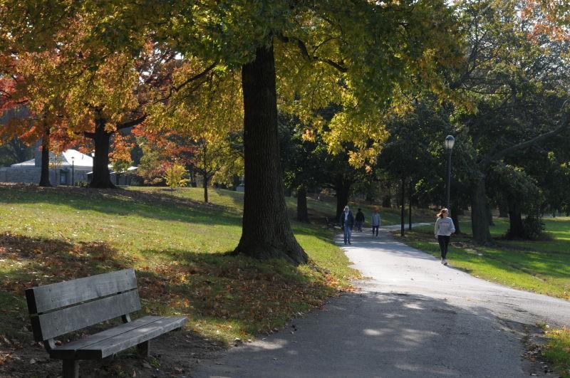 cunniham-park