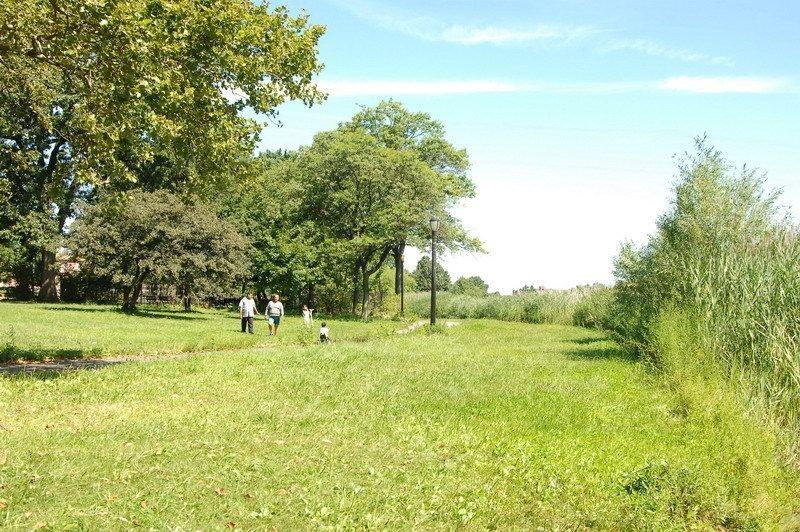 Baisley-Pond-Park3