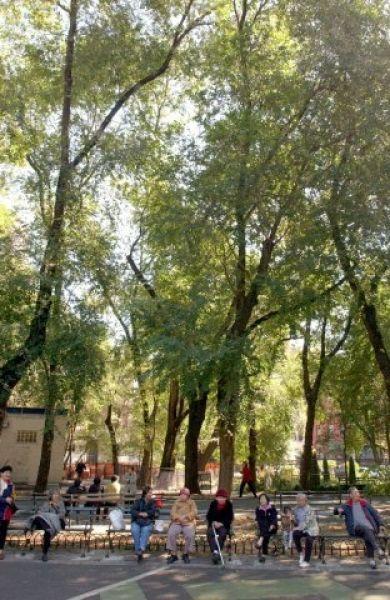 Seward Park (New York, New York)