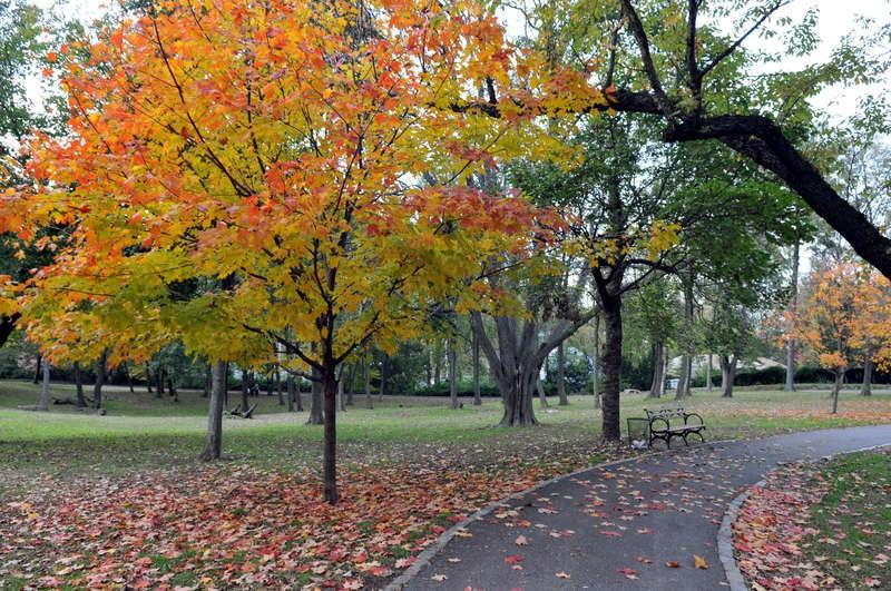 Von-Briesen-Park