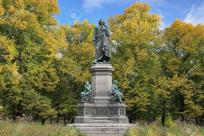 Linnaeus-Park
