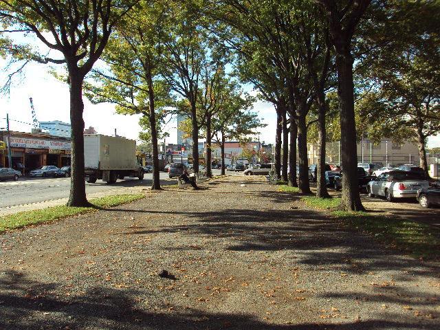 Sixteen Oaks Grove (Queens, NY)